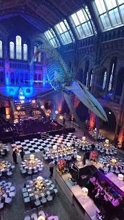Natural History Museum, Hintze Hall, London