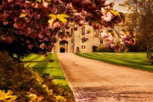 External Shot of Windsor Castle