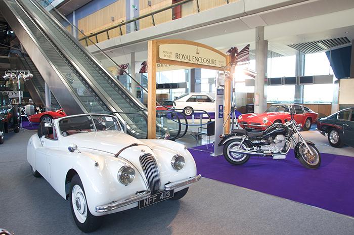 Ascot Racecourse Cars
