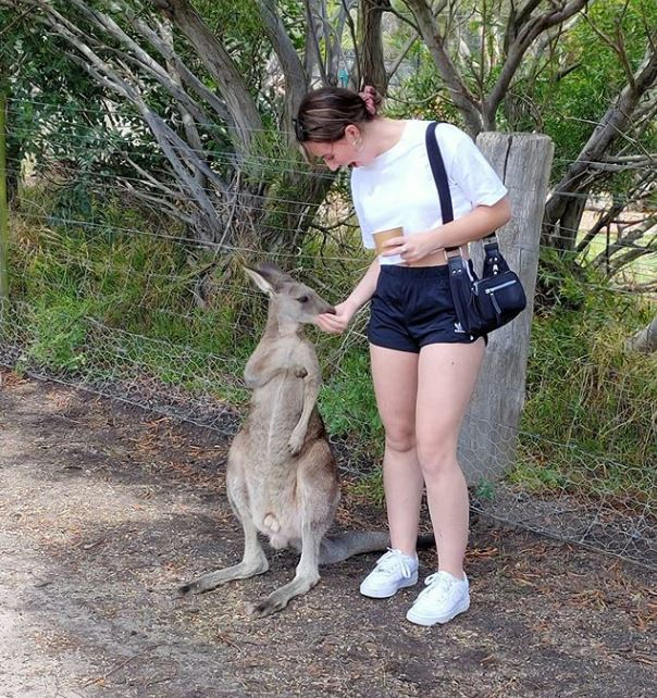 Nicole feeding a Kangaroo